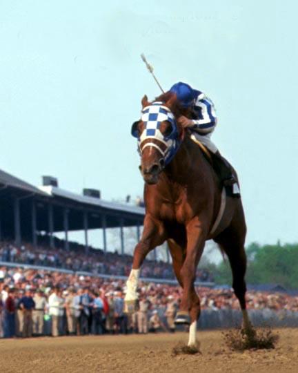 secretariat-racing1.jpg