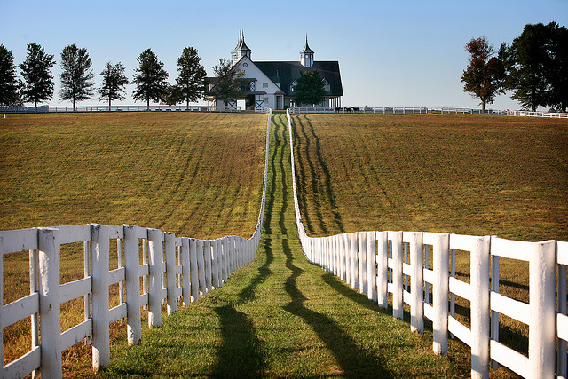 Keeneland horse farm 3