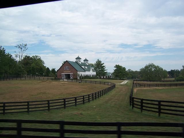 Keeneland horse farm 4