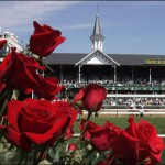 Churchill Roses