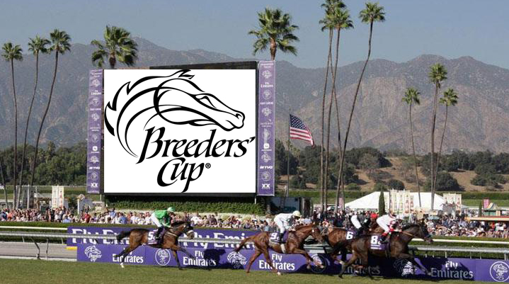 Breeders-Cup-SA Finish